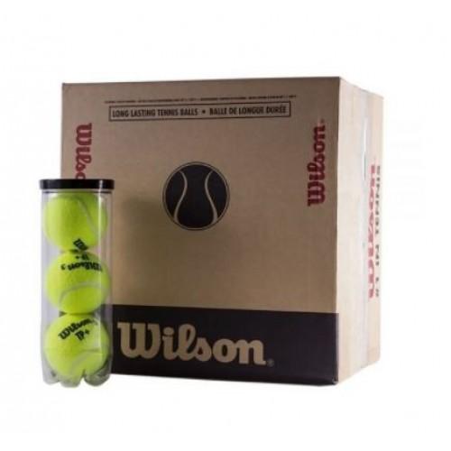 Cassa 48 palle paddle - 16 barche di 3 unità - Wilson Tp Ball - Barata Oferta Outlet